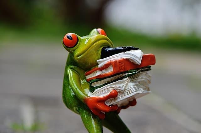 frog-e836b20620_640-3