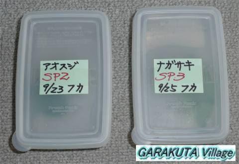 P20080926-P1070059-2